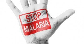 Fight-against-Malaria