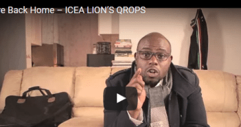 icea-lion-qrops
