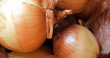 investing-in-onions