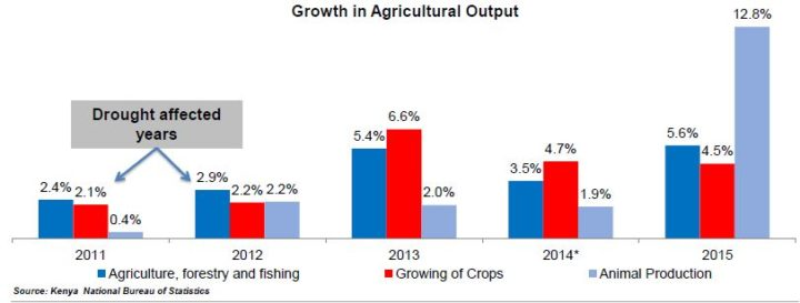 Growth and agriculture in drought period