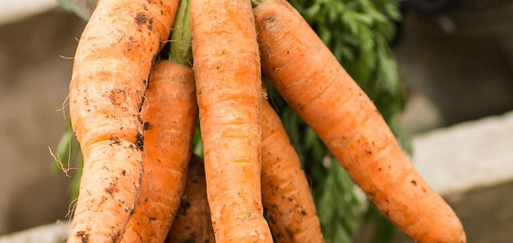 High Demand for Carrots Pushes its Price High in Mombasa
