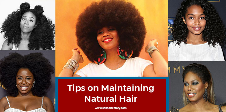 Eight Tips on Maintaining Healthy Natural Hair