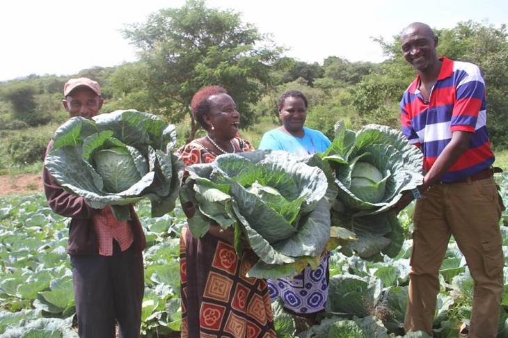 Agriculture Business Investment Opportunities in Makueni County