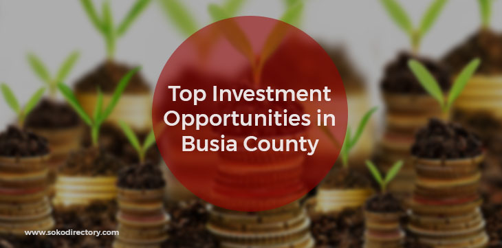 Top Investment Opportunities in Busia County