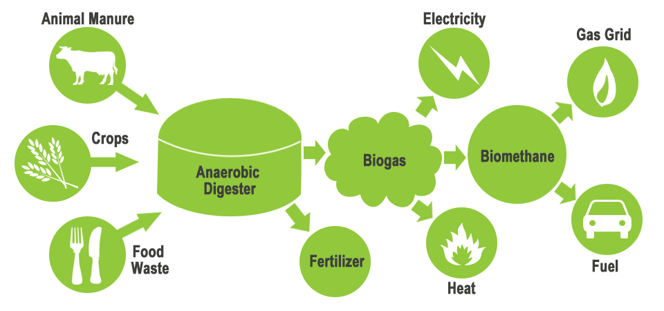 Home Hydrogen Generator >> 20-Year-Old Kenyan Manufactures Biogas and Fertilizer from Organic Waste
