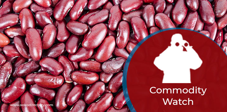 Beans prices kitale