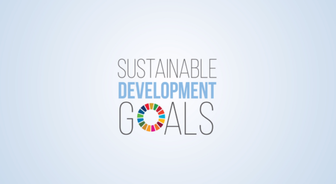 SDGs and Her Competition
