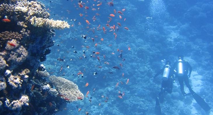 Underwater museum Kenya