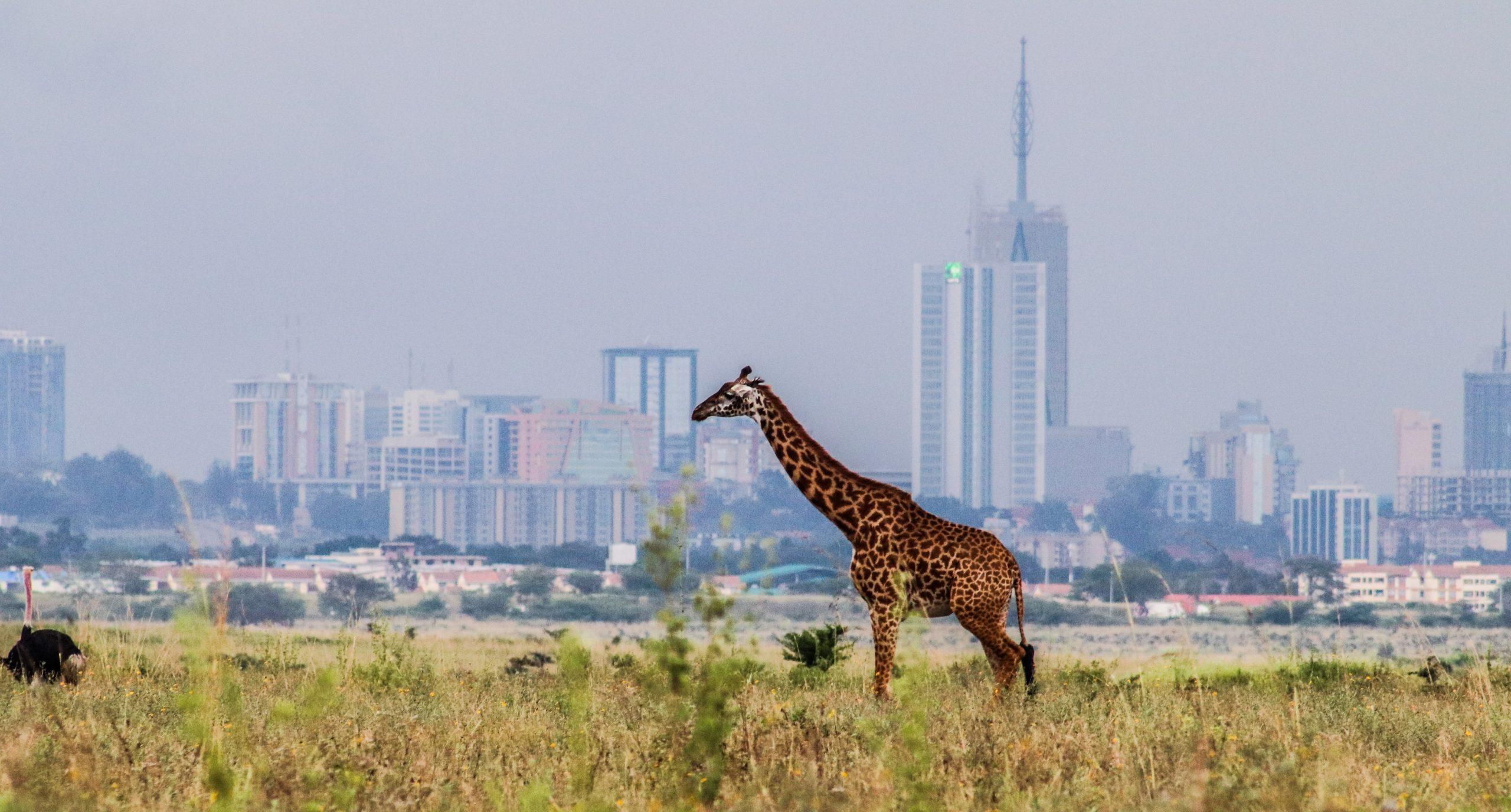 Nairobi City leading in world Travel